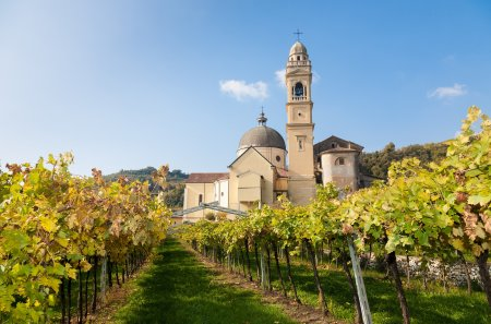 Weinrundreise durch Italien