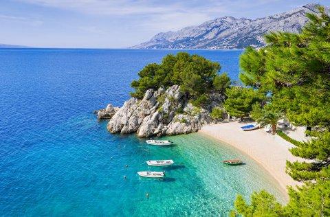 Camping Oliva - Rabac / Istrien