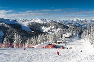 Alpin Style Hotel Erzherzog Johann - Steiermark