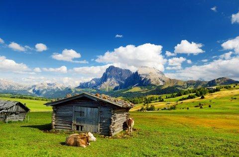 Trekkingreise Zillertaler Alpen und Seiser Alm/Dolomiten